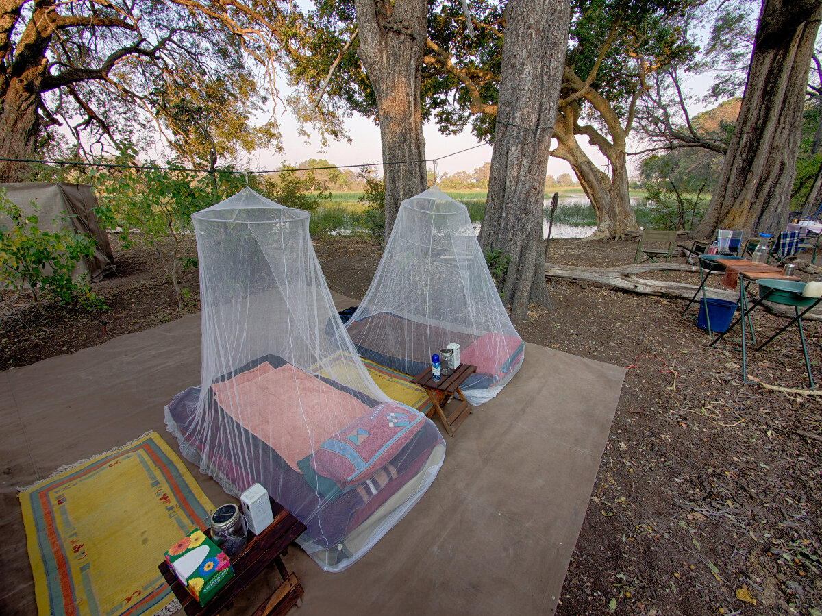 Okavango Horse Safaris Fly camp beds are protected by mosquito nets