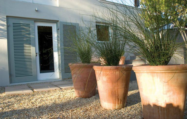 Four Rosmead garden decor