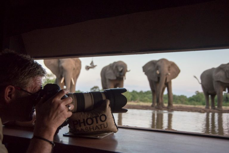 The photographic hide at Mashatu offers a unique perspective