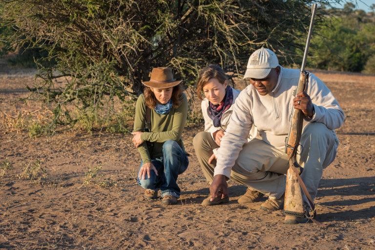 The guided interpretive bush walks are fascinating at Mashatu