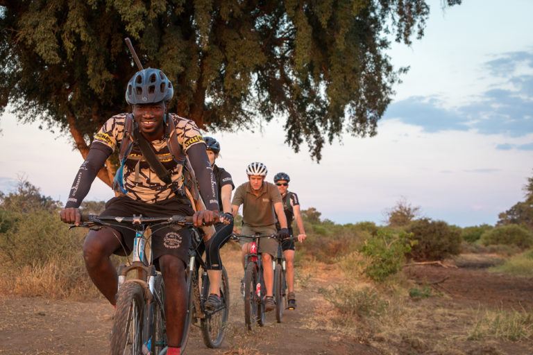 Cycling safaris from Mashatu offer a unique take on the safari experience