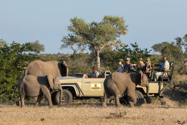 Game drives at Mashatu are enjoyable for all guests