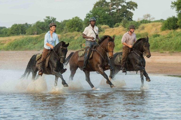 Mashatu guests have the chance to enjoy a riding safari
