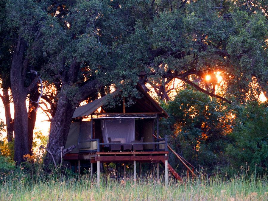 Accommodation at Mokolowane Camp with Okavango Horse Safaris