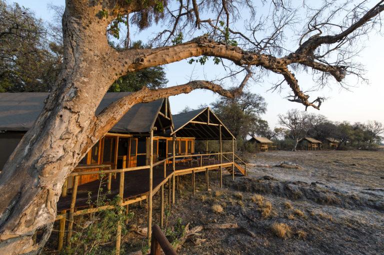 Okavango Horse Safari Mokolowane camp main area