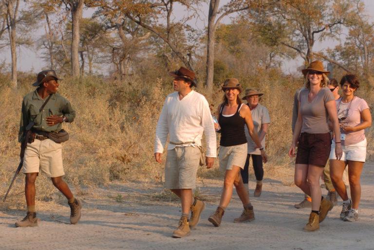 Horse Back Safaris bush walk from Macatoo