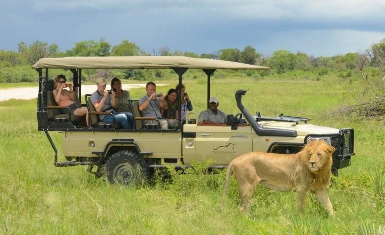 African Horse Safaris non riding game drive