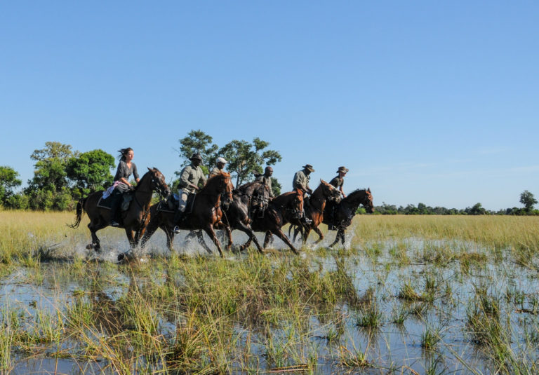 Horse Back Safaris offers a truly exceptional safari experience