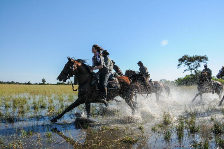 Water sprays everywhere as horses gallop through delta with Horse Back Safaris