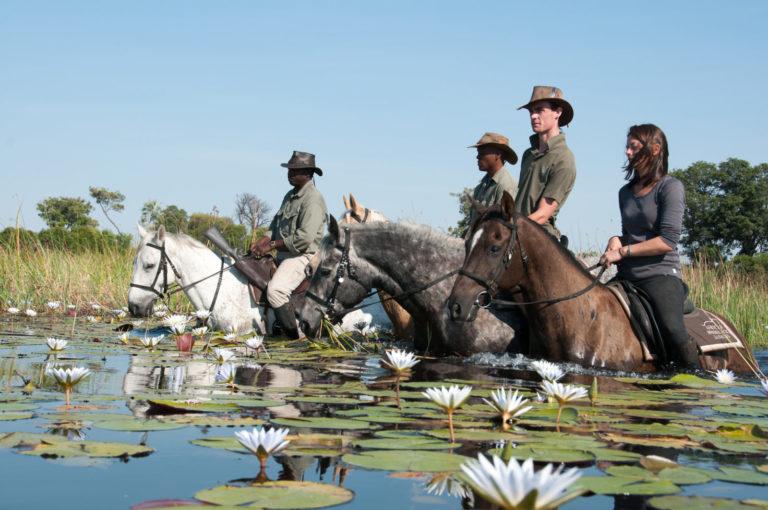 African Horse Back Safari Riders wading through waterlilies