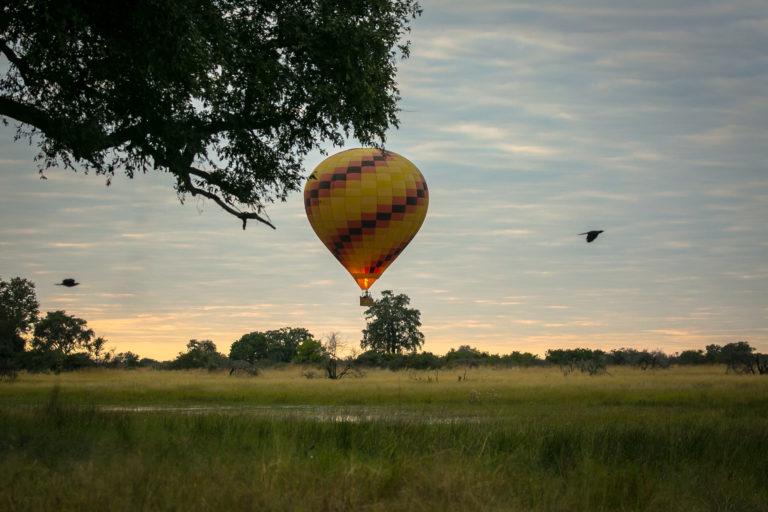Hot Air Balloon Safari from Bushman Plains Camp