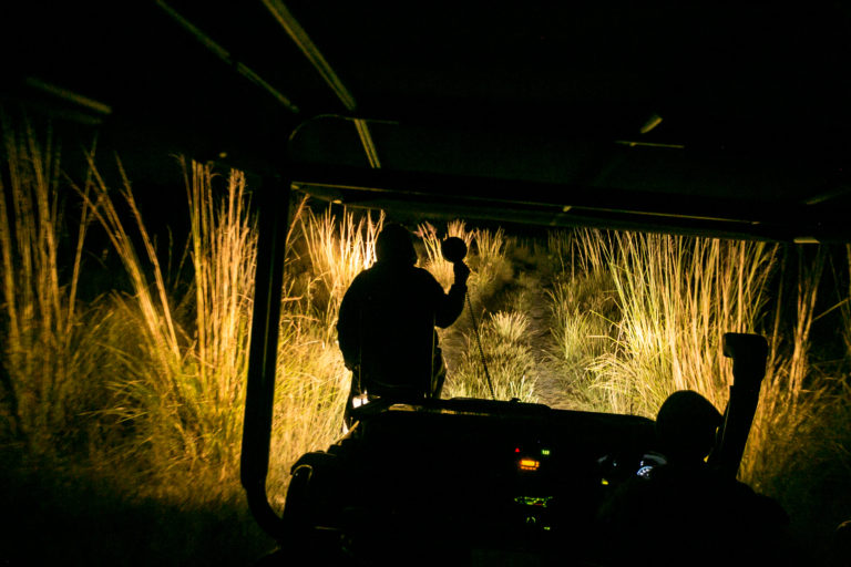 Night drives by spotlight are hosted by guides at Bushman Plains Camp