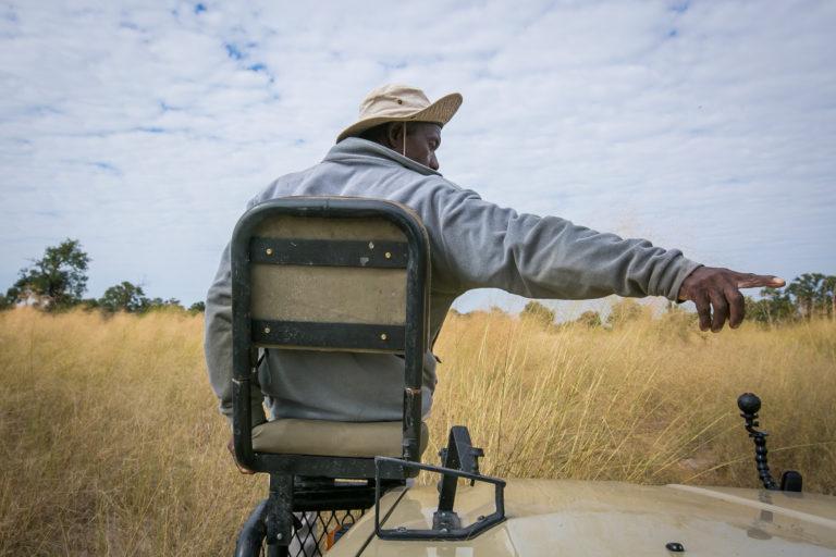 Bushman Plains Camp game tracker at work