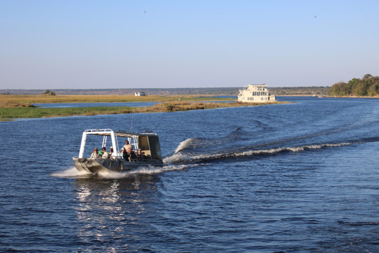 Tender boat excursion on the river with Chobe Princess guests