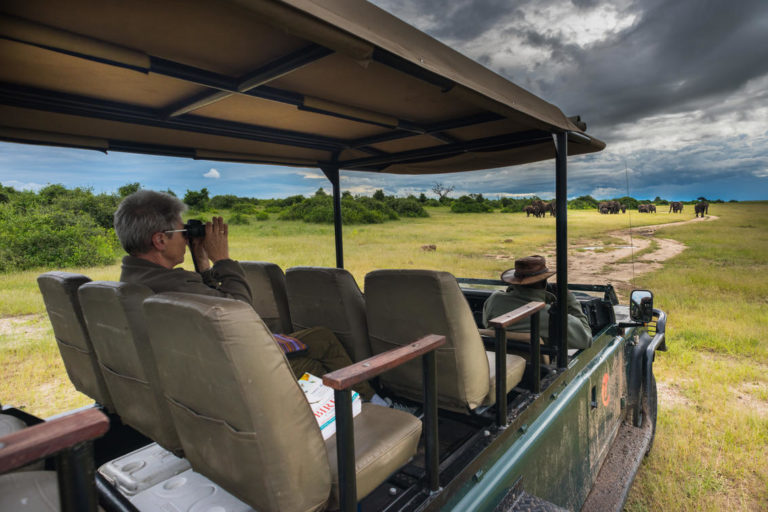 Muchenje game drives present plenty of photographic opportunities along Chobe River