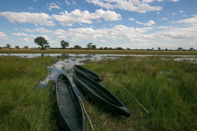 Mokoros in the Delta at Bushman Plains Camp