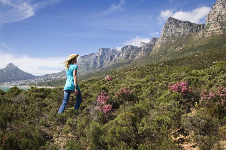 Mountain trail through the fynbos at Twelve Apostles