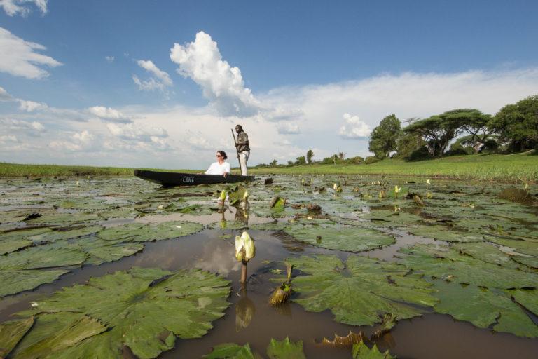 Muchenje mokoro excursion among the lily pads