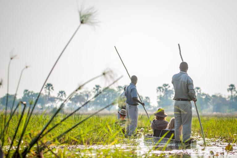 Oddballs Enclave mokoro through the reeds