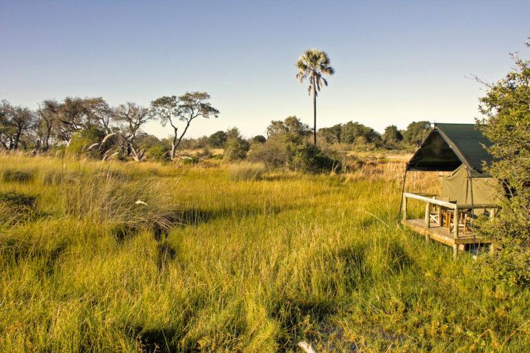 Oddballs Enclave tent with deck view over the Okavango