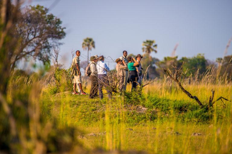 Oddballs Enclave guided walking safari