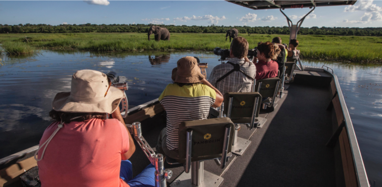 Pangolin Voyager guest photographers with focus on an elephant in the reedbeds of the Chobe River