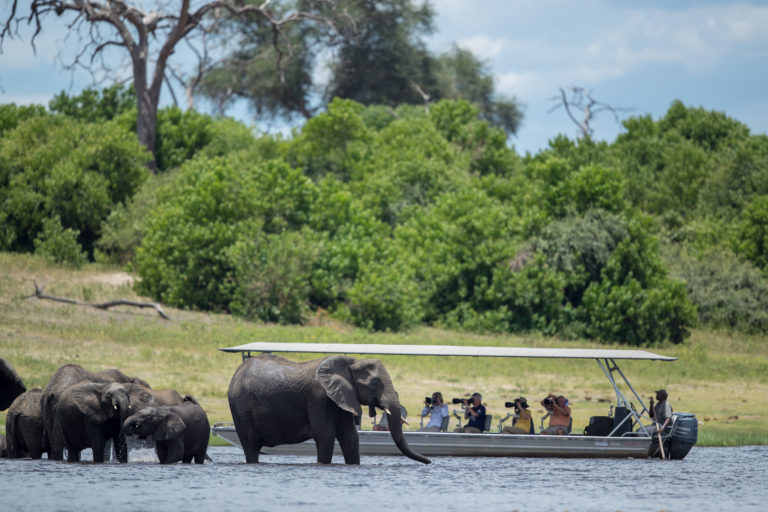 Boat safari excursions bring guests closer to nature and big game at the banks of the Chobe River