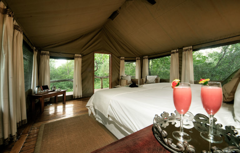 The spacious interior of the Royal Tree Lodge guest tents