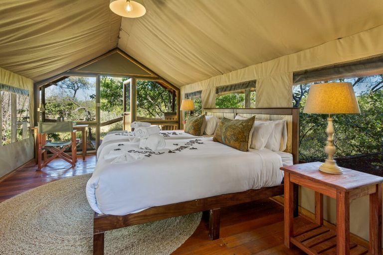Full view of tent interior and layout at Saguni Lodge