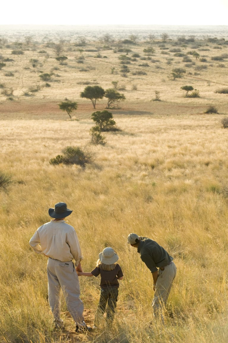 Tswalu offers guided walks for the whole family to enjoy