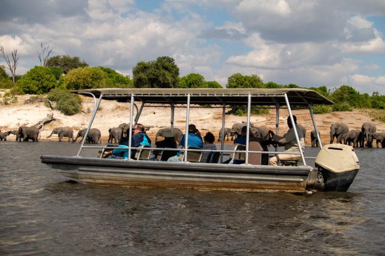 Zambezi Queen photographic safari close to riverbank