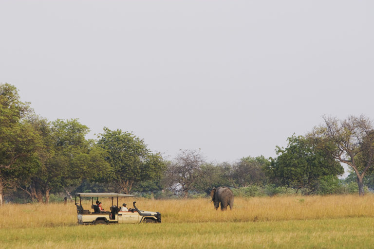 Shinde Enclave guests on a game drive