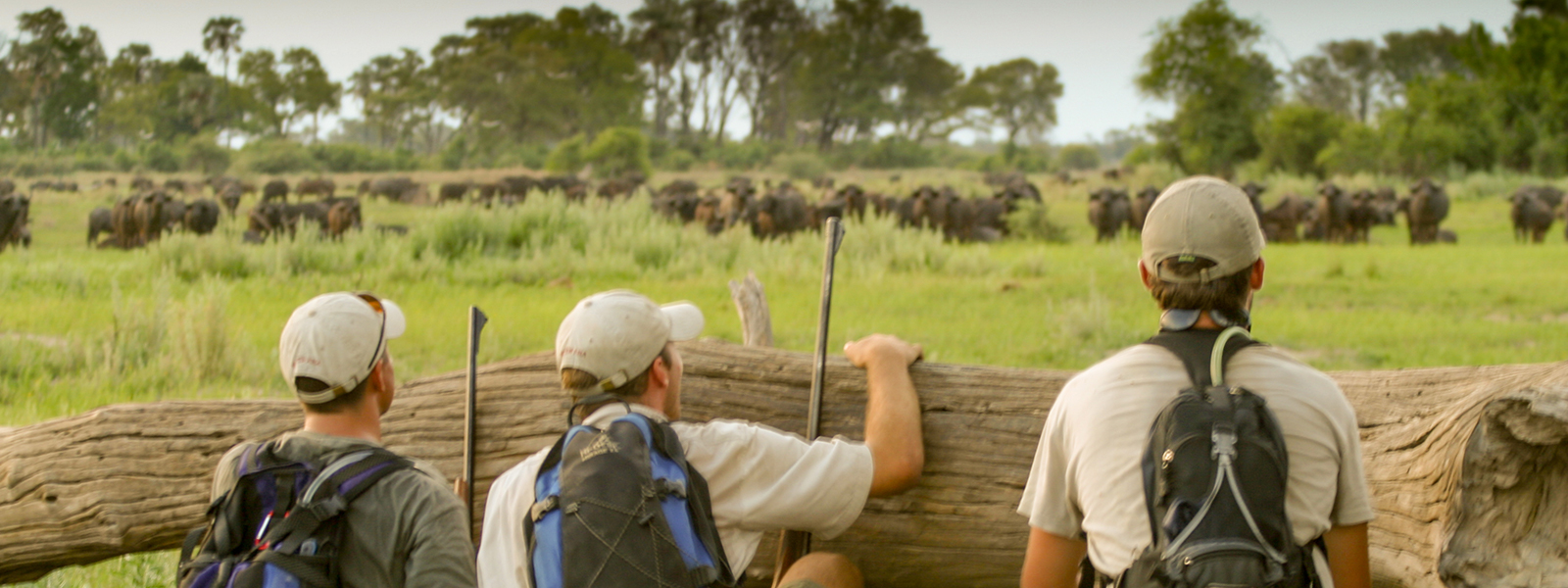 Field guide courses by the African Guide Academy