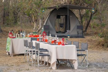 A private Botswana mobile safari with beagle expeditions