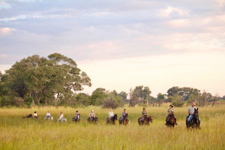 Delta Scenes on riding safari with David Foot