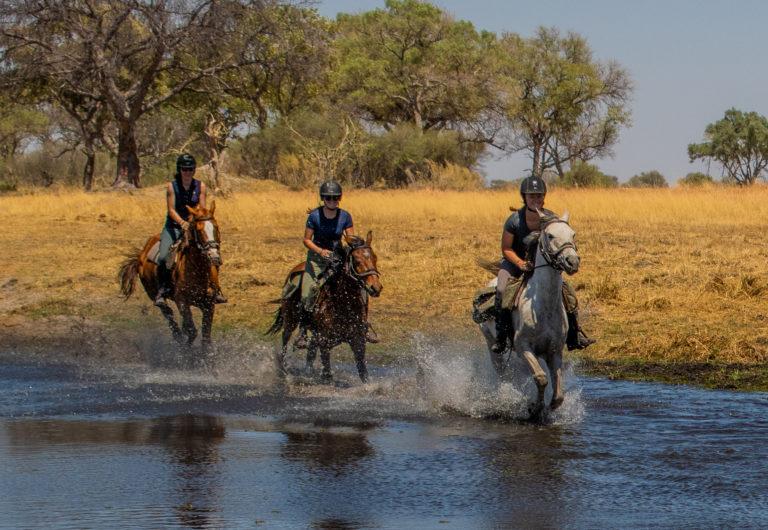 Delta Water Canter with David Foot Safaris