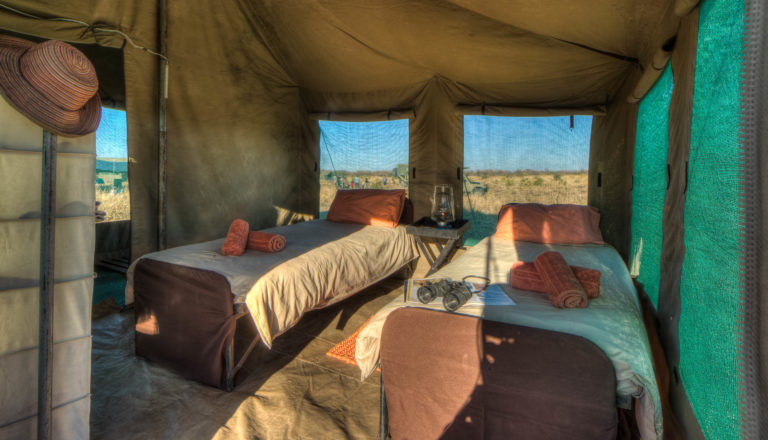 Interior layout of a Pride of Africa standard mobile camp