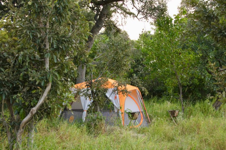 David Foot safari guests stay in well equipped tents
