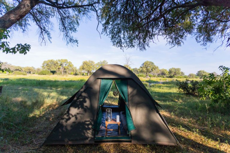 The adventure camp dome tent with Walk Safaris Botswana