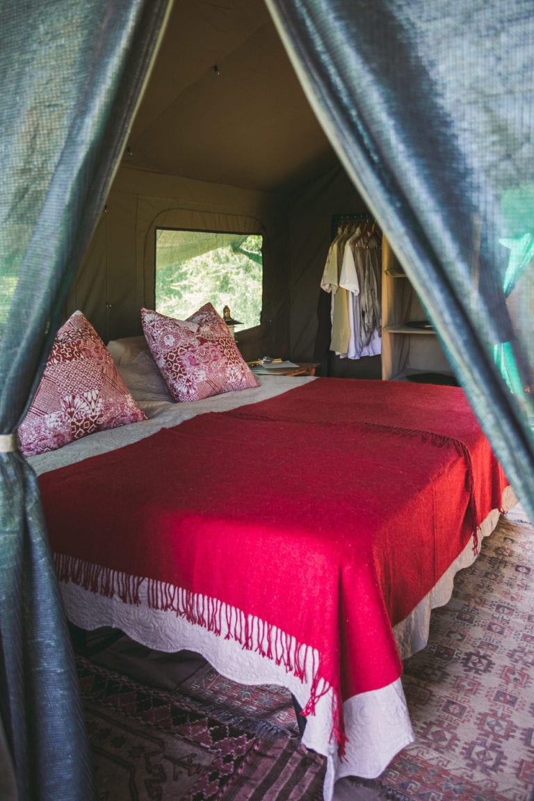 Luxury Tents - Walk Botswana Safaris