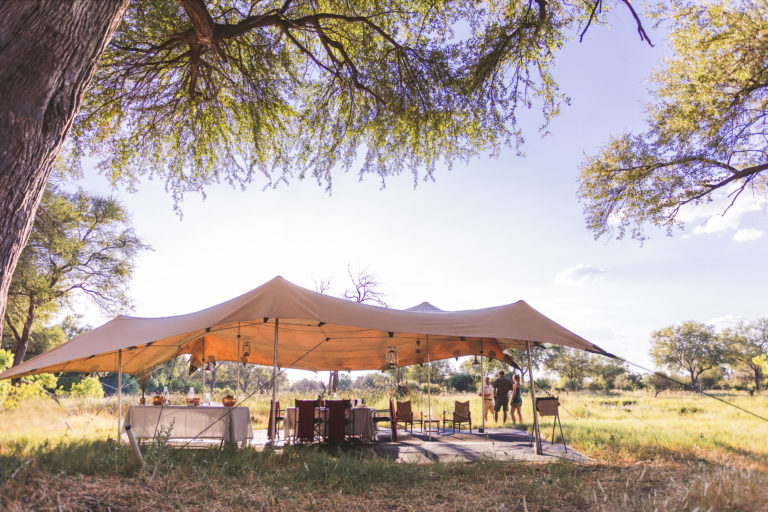 The mess tents in a Walk Botswana Safaris camp