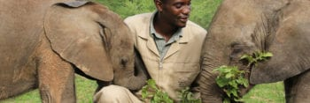 The Care Movement ensures Responsible tourism by partnering with Elephants without borders