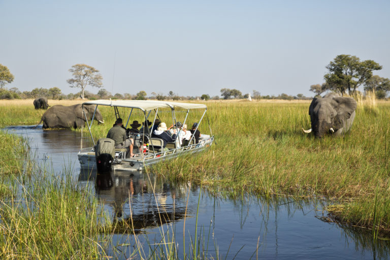 Navigating the water channels is a great way to explore the Okavango Delta with Endeavour safaris