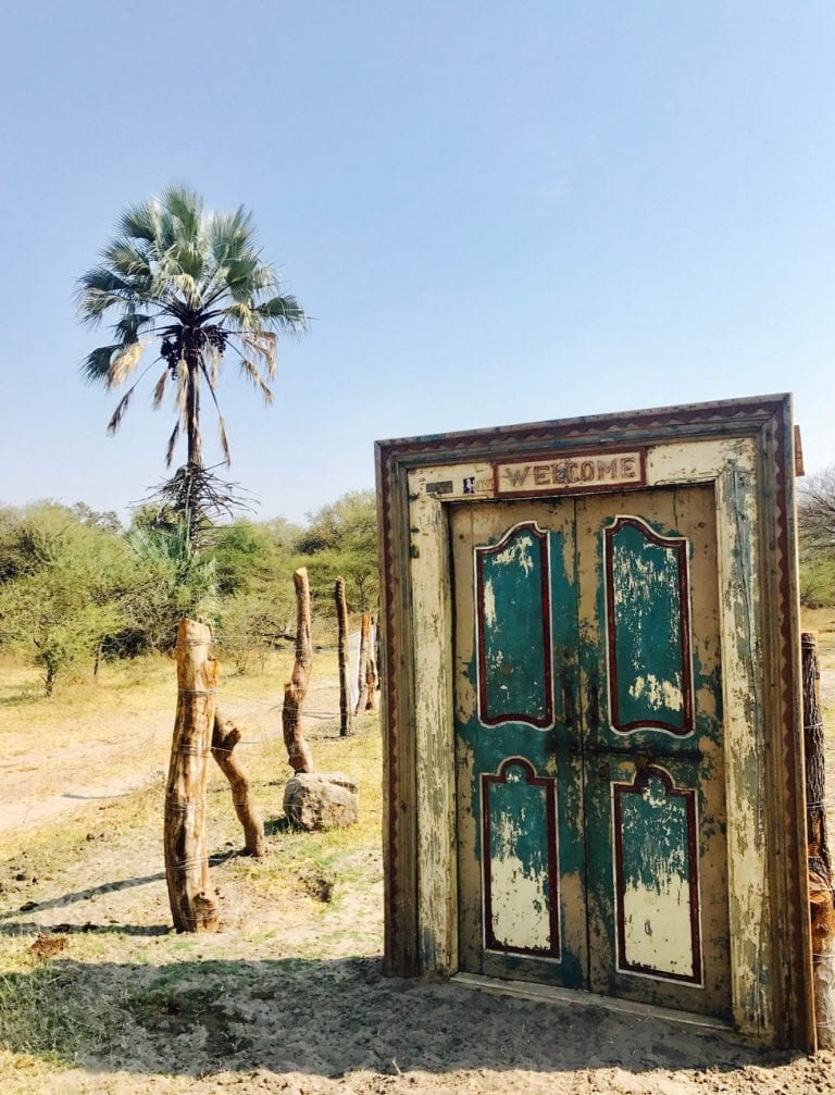 Walking through the eclectic gate into Little Pan Camp