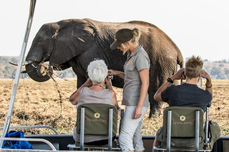 Expert photographers host all boat safaris with a guide to help with technical questions
